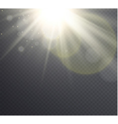 abstract golden sun flare with rays vector image