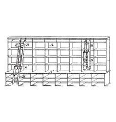 bifolding store ladder vintage vector image