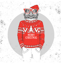 christmas hipster fashion animal frog vector image