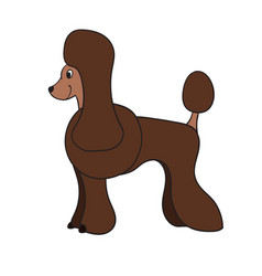 cute cartoon brown poodle isolated on white vector image