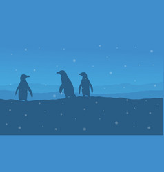 Silhouette of penguin at night landscape vector