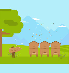 Apiary apiculture flat color vector