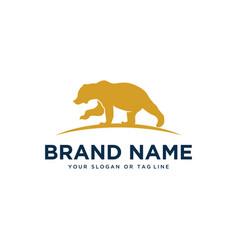 Bear design logo template vector