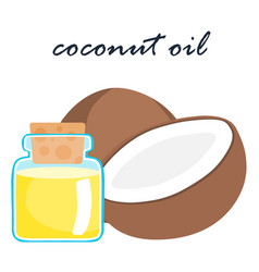 Coconut oil super food ingredient vector