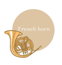 Colored french horn in hand-drawn style vector