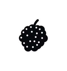 isolated bramble icon blackberry elemen vector image