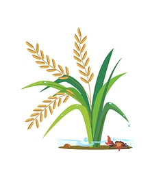 Rice03 vector