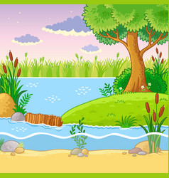 with a dam of beavers vector image