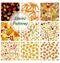 Autumn plants and trees leaves Seamless patterns vector image