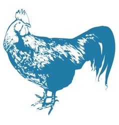 Blue Rooster symbol 2017 by Chinese calendar vector image