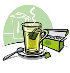 green tea and tea bags vector image