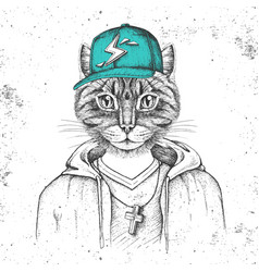 Hipster animal cat dressed in cap like rapper vector