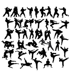 Martial art sport activity vector