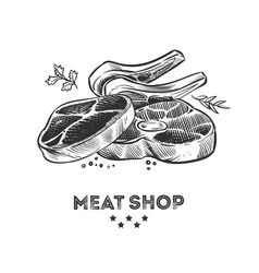 meat products fresh beafsteak and ribs hand drawn vector image