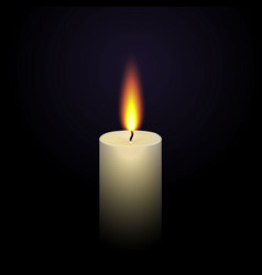 Realistic paraffin burning candl vector