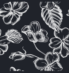 seamless pattern with hand drawn chalk impatiens vector image
