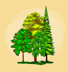 green forest summer trees collection in nature vector image vector image