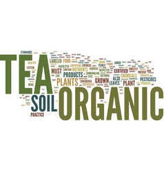 Athe beauty of the perfect cup of organic tea vector