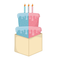birthday cake with candles vector image