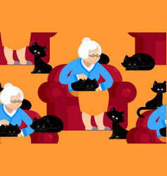 cat lady pattern grandmother and cat sitting on vector image