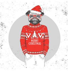 christmas hipster fashion animal pug dog vector image