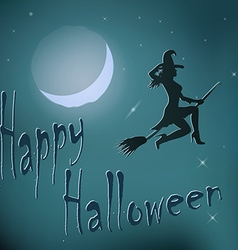 Halloween night witch riding broom vector image