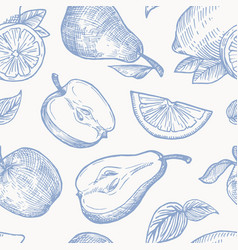 hand drawn autumn fruits harvest seamless vector image