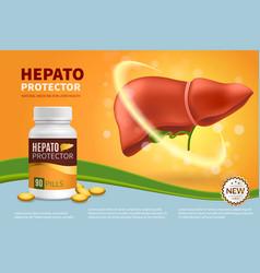 Hepatoprotector realistic composition vector