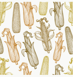 seamless pattern with corn on cob with leaves vector image