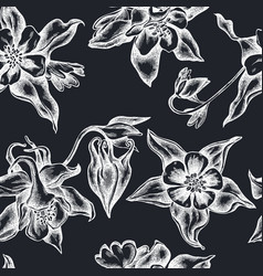 seamless pattern with hand drawn chalk aquilegia vector image