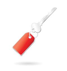 silver key vector image