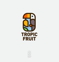 toucan bird logo holds mango tropic fruit vector image