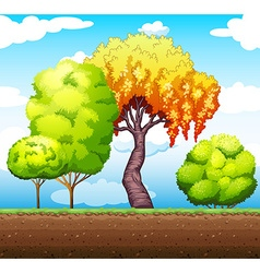 Trees in the park vector