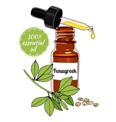 Bottle of Fenugreek essential oil with dropper vector image
