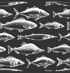 fish seamless pattern hand drawn fishes on chalk vector image