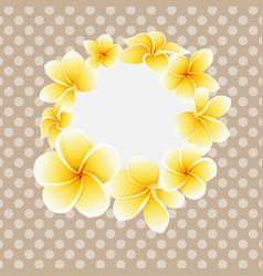 golden frangipani or plumeria flower on vector image