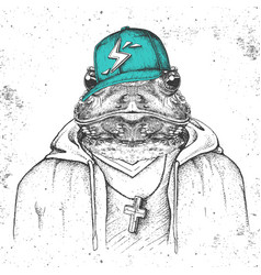 Hipster animal frog dressed in cap like rapper vector