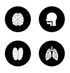 internal organs glyph icons set vector image