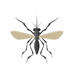 Mosquito icon isolated on white background vector