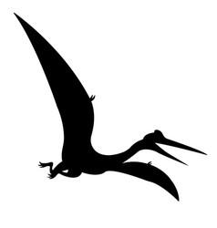 Pteranodon pterodactyl silhouette vector