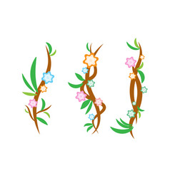 vine design with flower and leaf vector image
