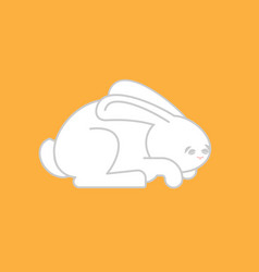 White rabbit isolated cute hare bunny animal vector