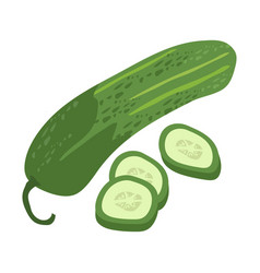 cucumber with slice flat design cucumber isolated vector image vector image