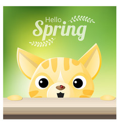 hello spring season background with a cat vector image vector image
