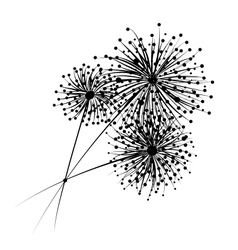 Dandelion flowers for your design vector
