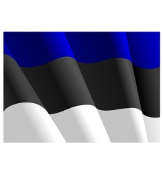 flag of Estonia vector image