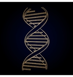 Graphic DNA structure vector