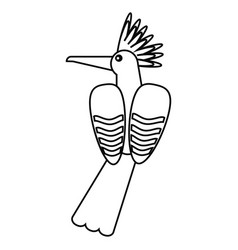 Hoopoe bird exotic thin line vector