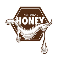 Pure honey poster monochrome sketch outline vector