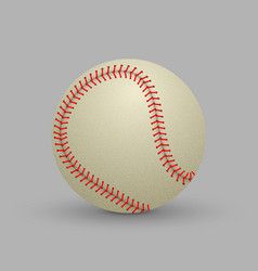 realistic baseball ball vector image